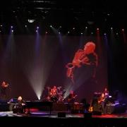 """""""Jazzman""""!  Brisbane, Australia.  Photo by Elissa Kline"""